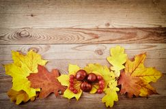 Yellow and orange autumn leaves on old wood background. Stock Photo
