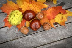 Yellow and orange autumn leaves on old wood background. Stock Photography