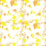 Yellow and orange autumn leaves Stock Photos