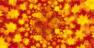 Yellow, Orange, Flower, Petal Stock Photo