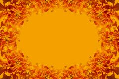 Yellow orange frame Stock Images