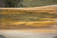 Yellow and orange geothermal pool at Mammoth Hot Springs, Yellow Stock Photography
