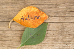 Yellow or orange leaf with inscription GOODBYE SUMMER in the female`s hand on the wooden background Stock Image
