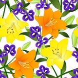 Yellow, Orange Lily and Blue Iris Flower on White Background. Vector Illustration.  stock illustration