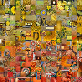 YELLOW ORANGE patchwork photomontage background Royalty Free Stock Images
