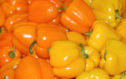 Yellow & Orange Peppers. Delicious & nutritious these yellow and orange peppers are good for you Stock Image