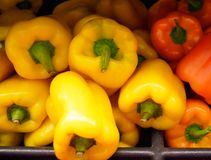 Yellow and Orange peppers Royalty Free Stock Photo