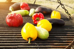 Yellow and Orange Peppers, Eggplant on the Grill. Background, texture of vegetables on the grill bbq. Raw vegetables on the grill bbq. Yellow, red and orange Royalty Free Stock Photo