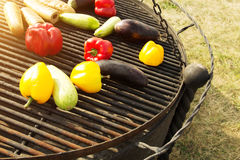 Yellow and Orange Peppers, Eggplant on the Grill. Background, texture of vegetables on the grill bbq. Raw vegetables on the grill bbq. Yellow, red and orange Stock Photography