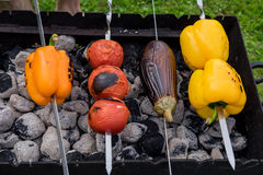 Yellow and Orange Peppers, Eggplant and Tomatoes on the Grill Royalty Free Stock Photography