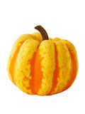 Yellow and orange pumpkin Stock Photos