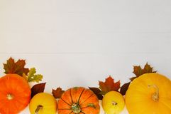 Yellow and orange pumpkins and autumn leaves on white wooden background for harvest fall and thanksgiving theme. royalty free stock images
