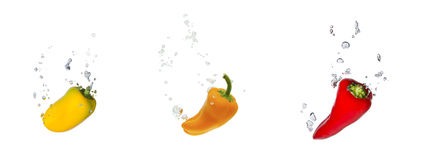 Yellow, orange and red capsicum in water. Yellow, orange and red capsicum falling into water, with air bubbles, in front of white background, union of the three stock photography