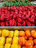 Yellow Orange Red and Green Peppers Stock Photography