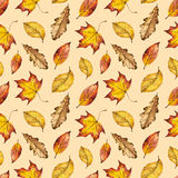 Yellow, orange and red leaves seamless watercolor pattern. Watercolour autumn background of leaf oak, maple, elm, hand painted botanical illustration for Stock Photos