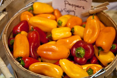 Yellow Orange and Red Peppers Royalty Free Stock Photos