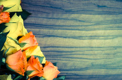 Yellow and orange roses background Stock Photos