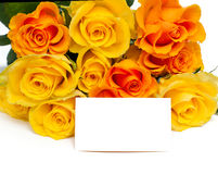 Yellow and orange roses Royalty Free Stock Photography