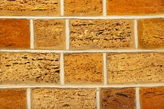 Yellow and orange shell limestone brick wall as abstract backgro Stock Image