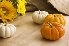 Mini Pumpkins & Flowers on a Wooden Table. Yellow, orange and white mini pumpkins with flowers on a wooden table Royalty Free Stock Image