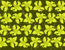 Yellow Orchid Background. Abstract Background design of a repeating yellow orchid pattern royalty free illustration