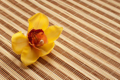 Yellow Orchid on bamboo napkin Royalty Free Stock Photos