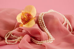Yellow orchid and beads Stock Images