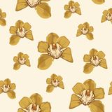 Yellow orchid Phalaenopsis floral seamless pattern. Exotic spring summer flowers in bloom. Blossom foliage bouquet on the light yellow background royalty free illustration