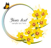 Yellow orchids banner with a butterfly. Royalty Free Stock Photography