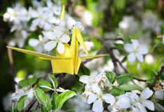 Yellow origami paper crane. One origami paper yellow crane is sitting on the branch of blooming tree with white flowers around Stock Photos