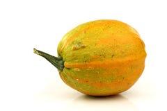 Yellow ornamental pumpkin stock image