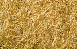 Yellow packing straw material background Royalty Free Stock Image