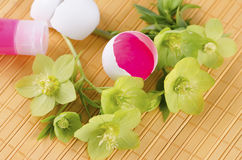 Yellow pad with red tempera in a egg shell as an Easter decoration. And hellebore Stock Photo
