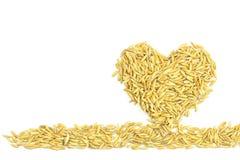 Yellow paddy jasmine rice Stock Photos