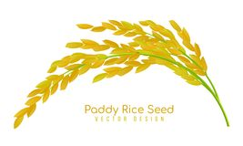 Yellow paddy rice seed vector design stock illustration
