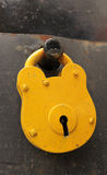 Yellow padlock Stock Images