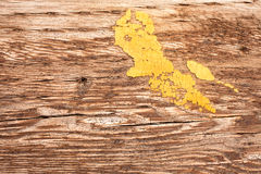 Yellow paint platter on wood. Remains of old cracked yellow paint on weathered wood surface Stock Photos
