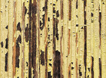 Yellow paint water damaged and flaking. Yellow painted on old weathered wood texture, water damaged and flaking Royalty Free Stock Photos