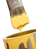 Yellow Paintbrush close up Stock Photos