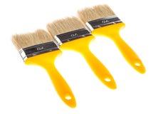 Yellow paintbrushes Stock Photography
