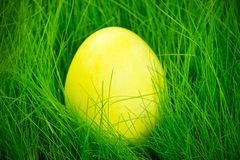 Yellow painted Easter egg Royalty Free Stock Image