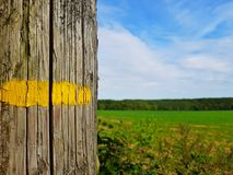 Yellow Painted Line Royalty Free Stock Images