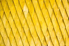Yellow painted wooden shingle surface Stock Photos