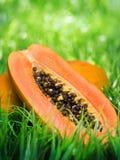 Yellow papaya on green grass Stock Photos