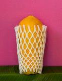 Yellow papaya wraped by foamnet Stock Photo