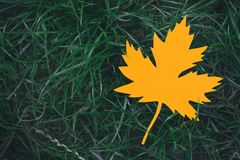 Yellow paper maple leaf on green grass. Hello Autumn concept. Copy space. Yellow paper maple leaf on green grass. Hello Autumn concept. Copy space royalty free stock photo
