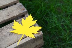 Yellow paper maple leaf on a wooden box on the green grass. Hello Autumn concept. Copy space. Yellow paper maple leaf on a wooden box on the green grass. Hello royalty free stock image