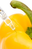 Yellow paprika and injection. Concept of biotechnology experiment or food engineering Royalty Free Stock Photos