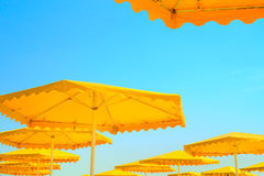 Yellow parasol Stock Images