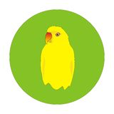 Yellow parrot Royalty Free Stock Image